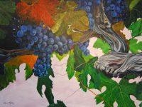 old-vine-merlot1f