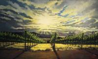 Sunrise Altamont